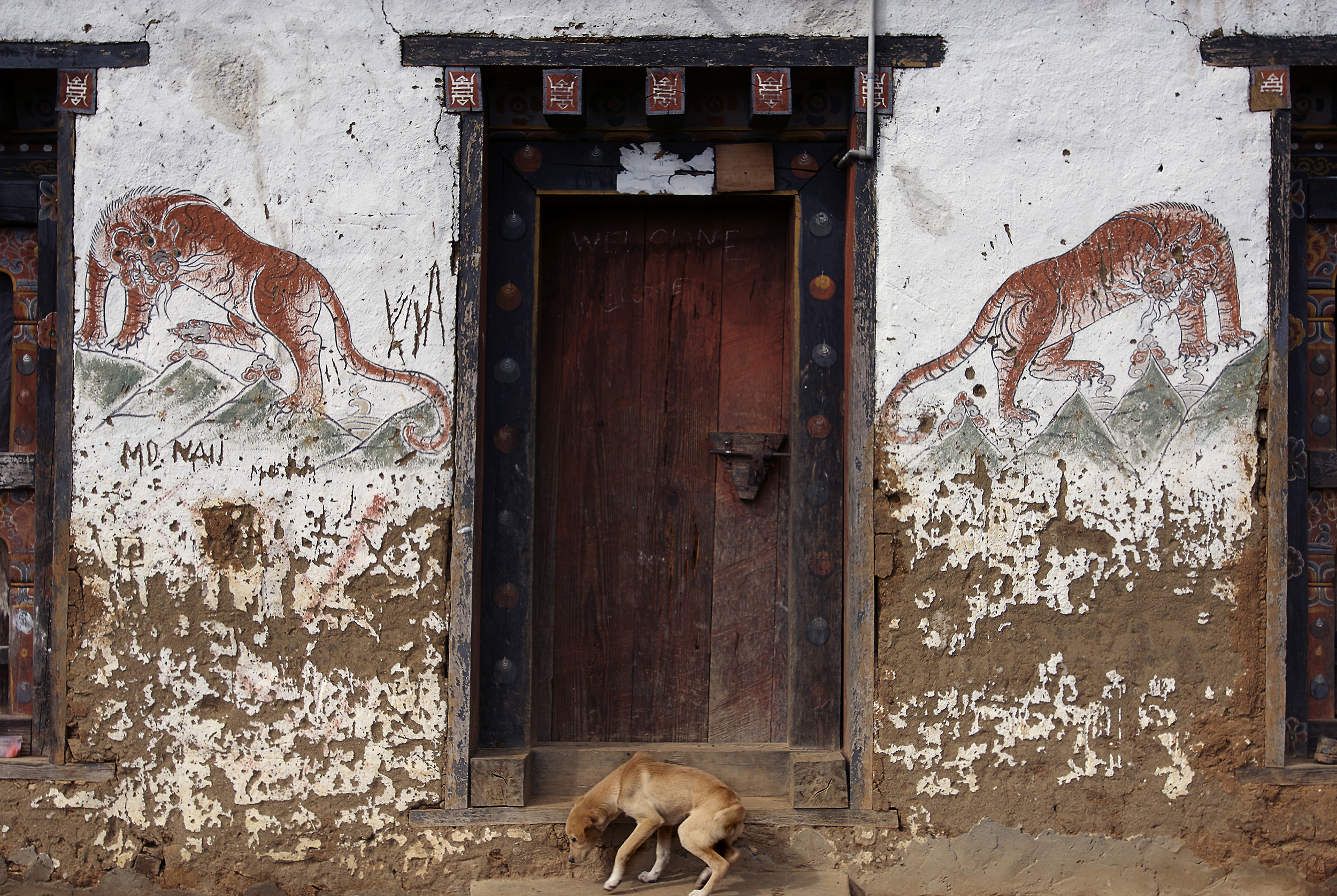 Traditionally painted house wall    with stray dog 10.09.07 Eusakha.