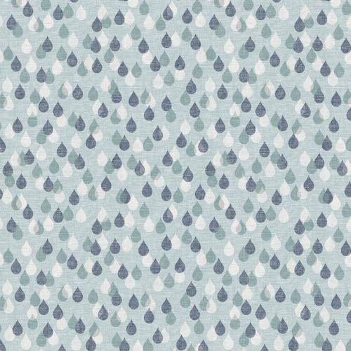 BIRD 1231 – Raindrops