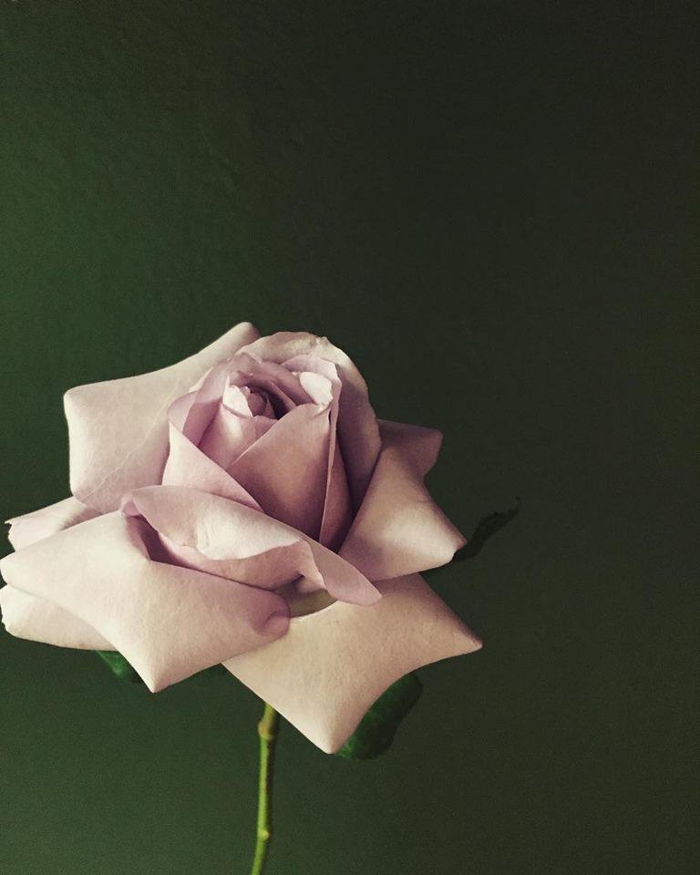 V flowers.jpg
