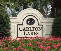 Joe-the-Home-Pro-Carlton-Lakes-Naples-Florida-photo