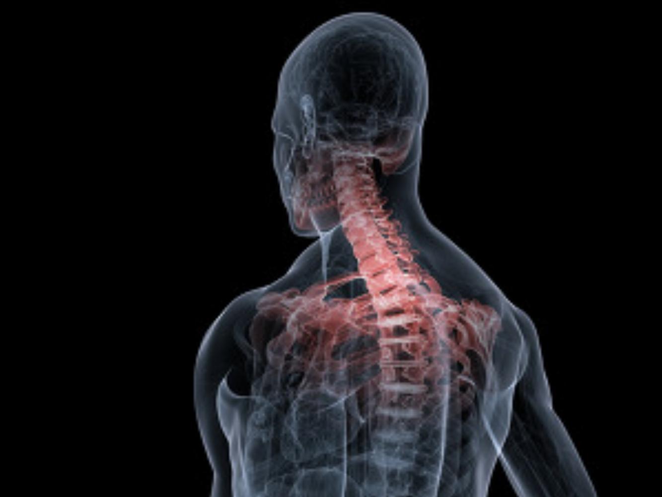 Chiropractic Blog