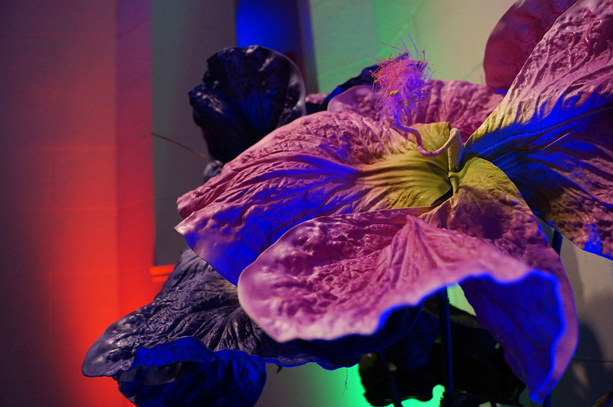 Colourful up-lighting with decorative over-sized faux purple flowers - Historia Wedding and Event Planning