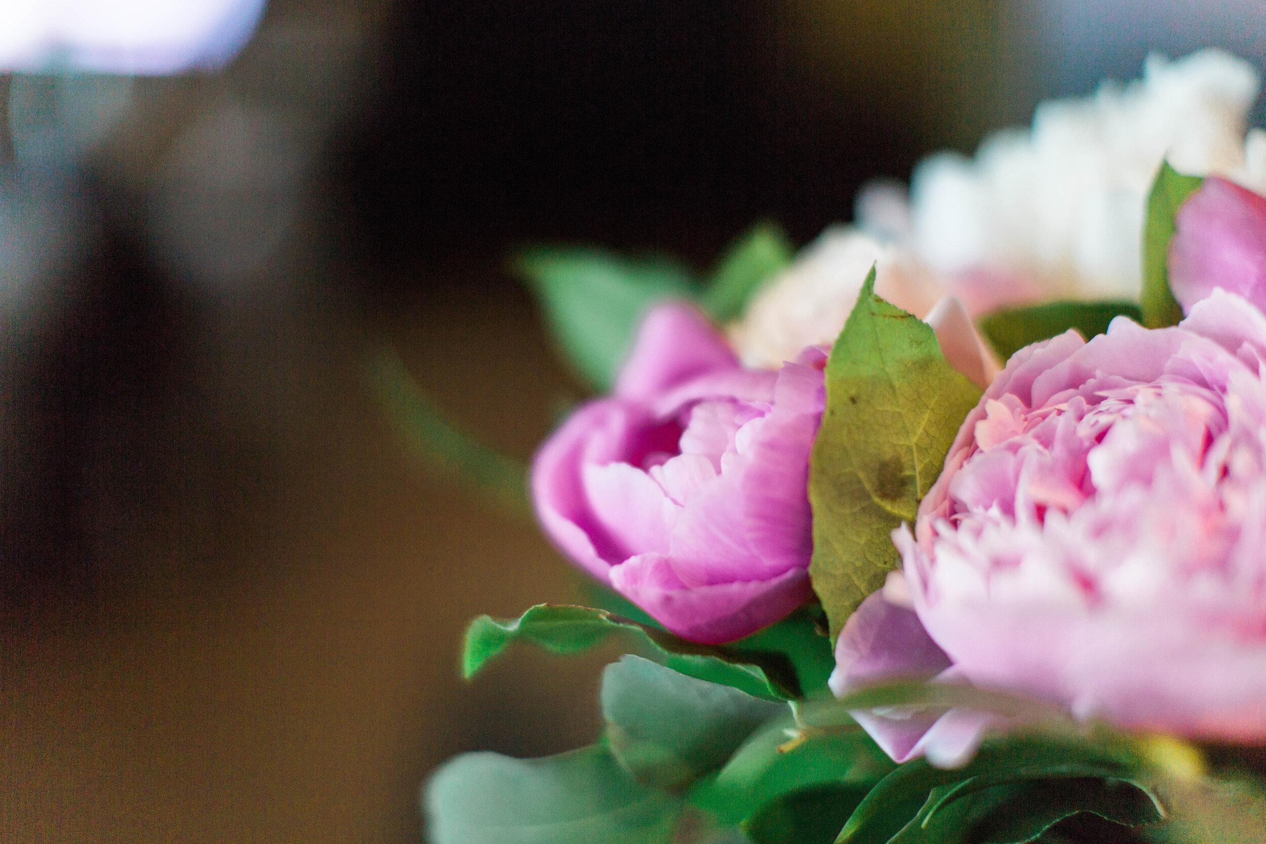 Pink peonies - Trendy Modern Brunch Wedding - Historia Wedding and Event Planning