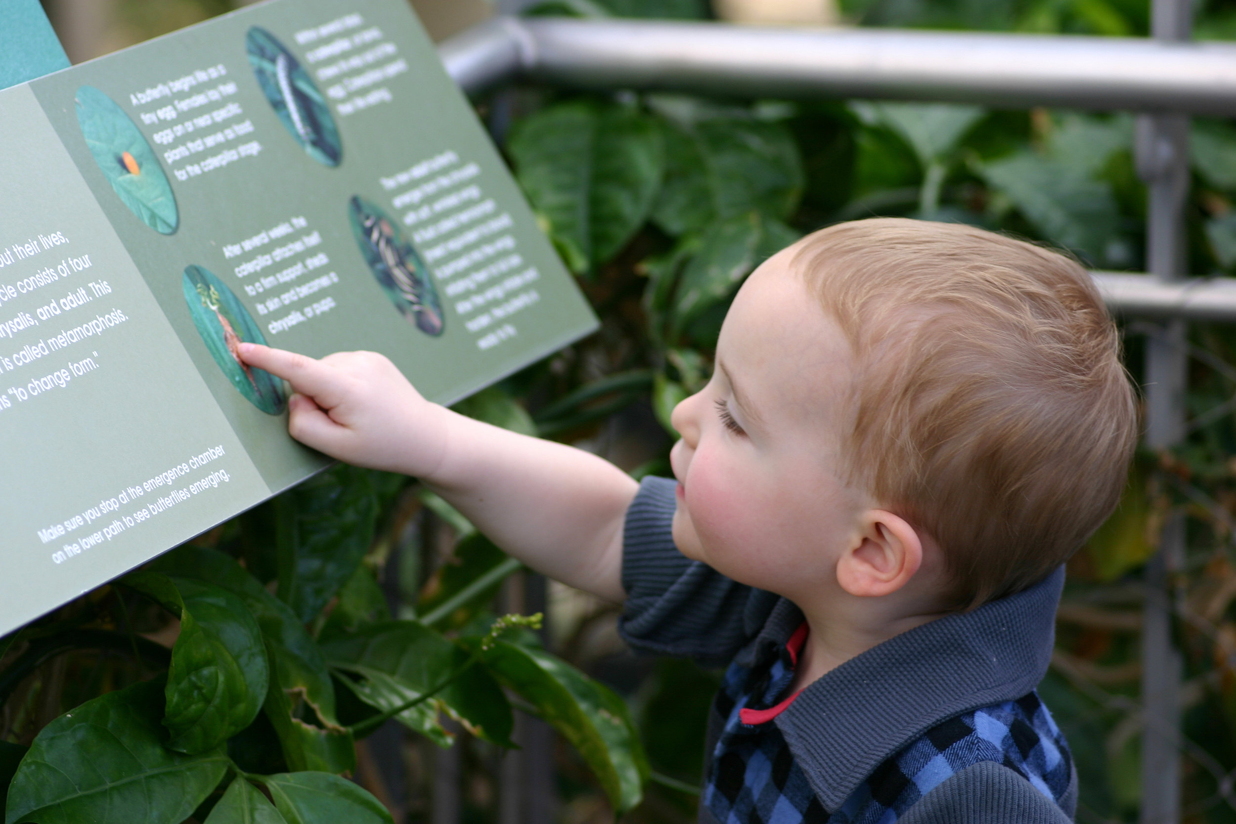 Toddler Talks helps encourage discovery.