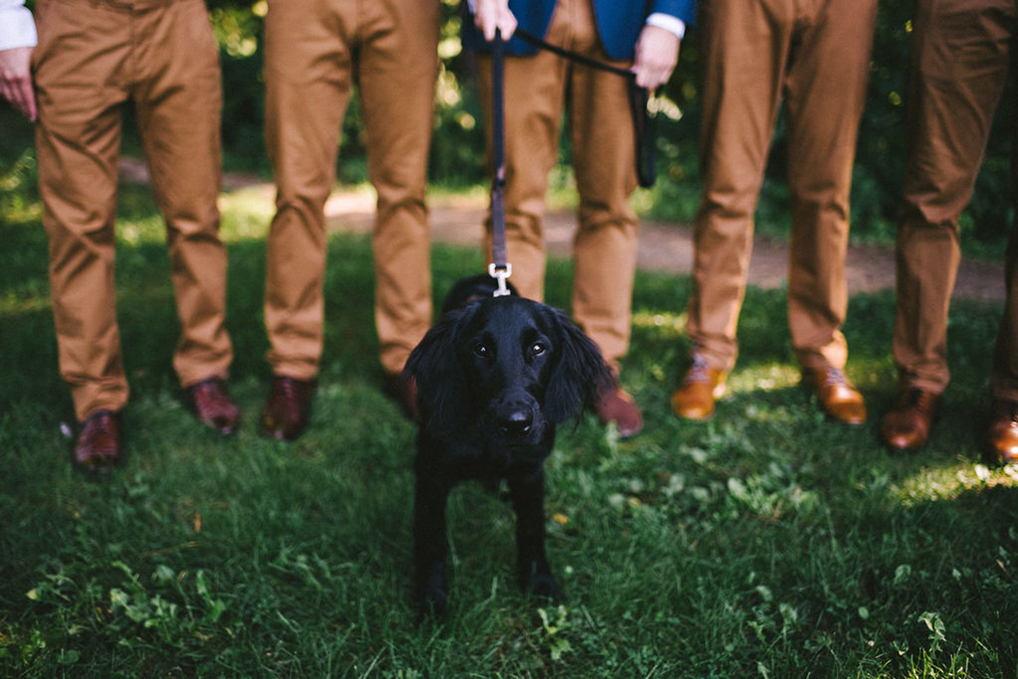 puppy with groomsmen at Parry Sound camp wedding