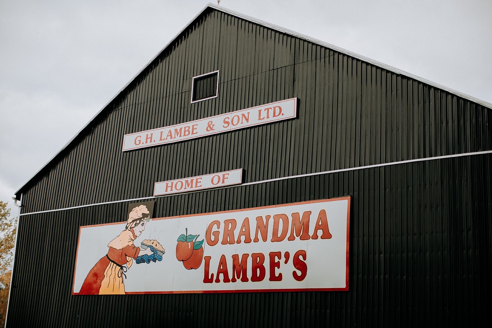 grandma-lambes-jvs-394.jpg