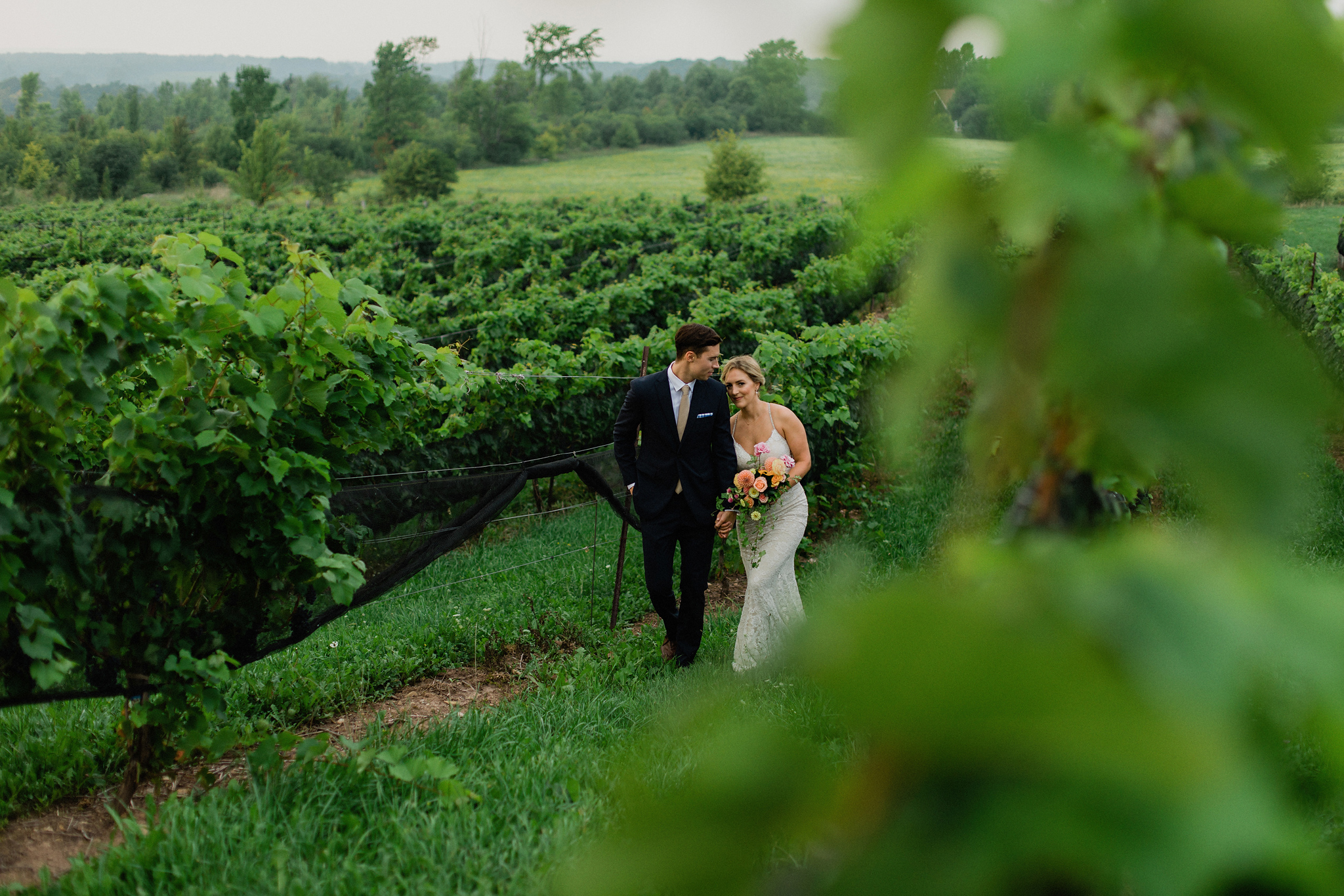 Bride and groom portraits in the vineyards at Coffin Ridge Bouti