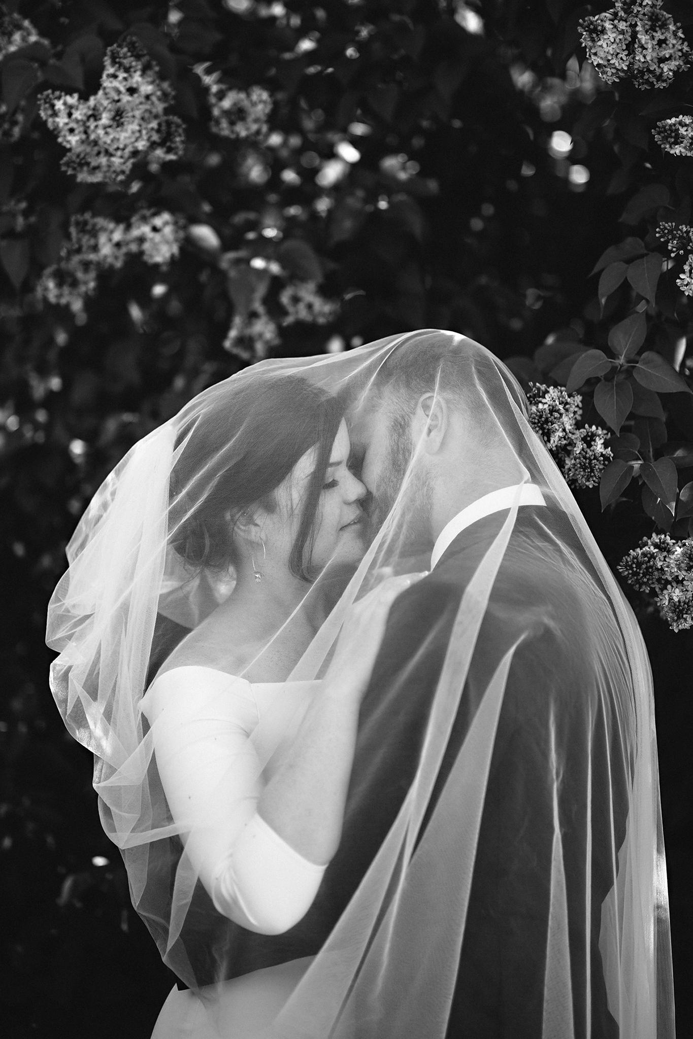 Frances Beatty Photography