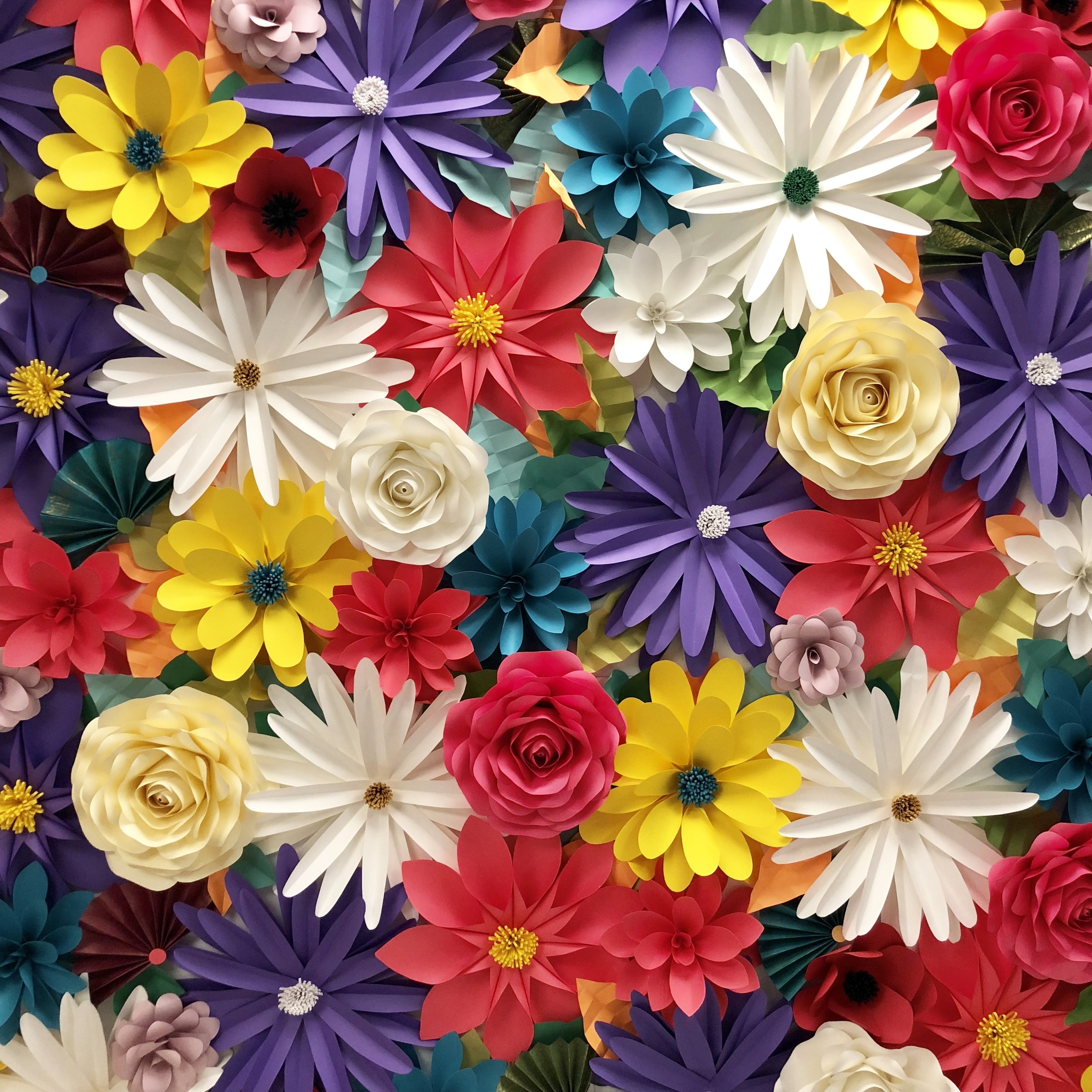Clara  Multi-color filled with daisies, roses, dahlias & paper fans