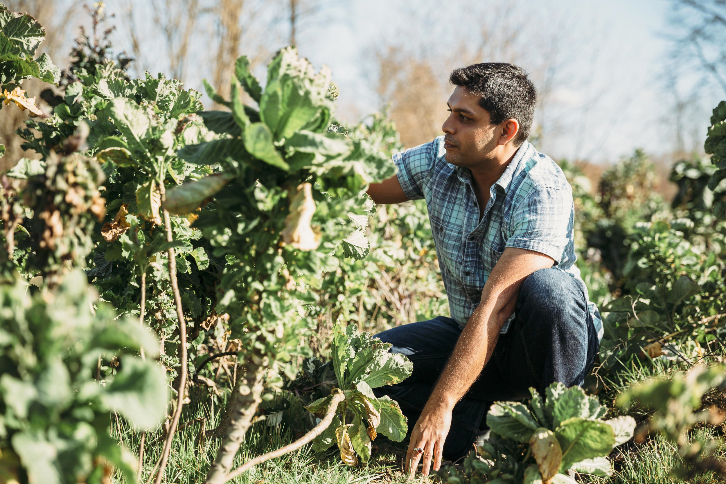 FarmBeats  - Alright. This was a fun one. Not because I captured the most artistic photos on the planet, but because the cause behind this photo is inspiring. Ranveer Chandra is a researcher at Microsoft Research working on a project called  FarmBeats . The project is focused on bringing AI to farms so famers can be more productive, put more money in their pockets (farmers currently get screwed by regulations and politics) and increase food supply for a world whose demand is out pacing supply. His work has caught the ears of the Bill and Melinda Gates foundation and inspired substantial interest in India and other developing countries desperate to increase food supply.
