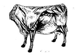 big_meat_on_hoof.jpg