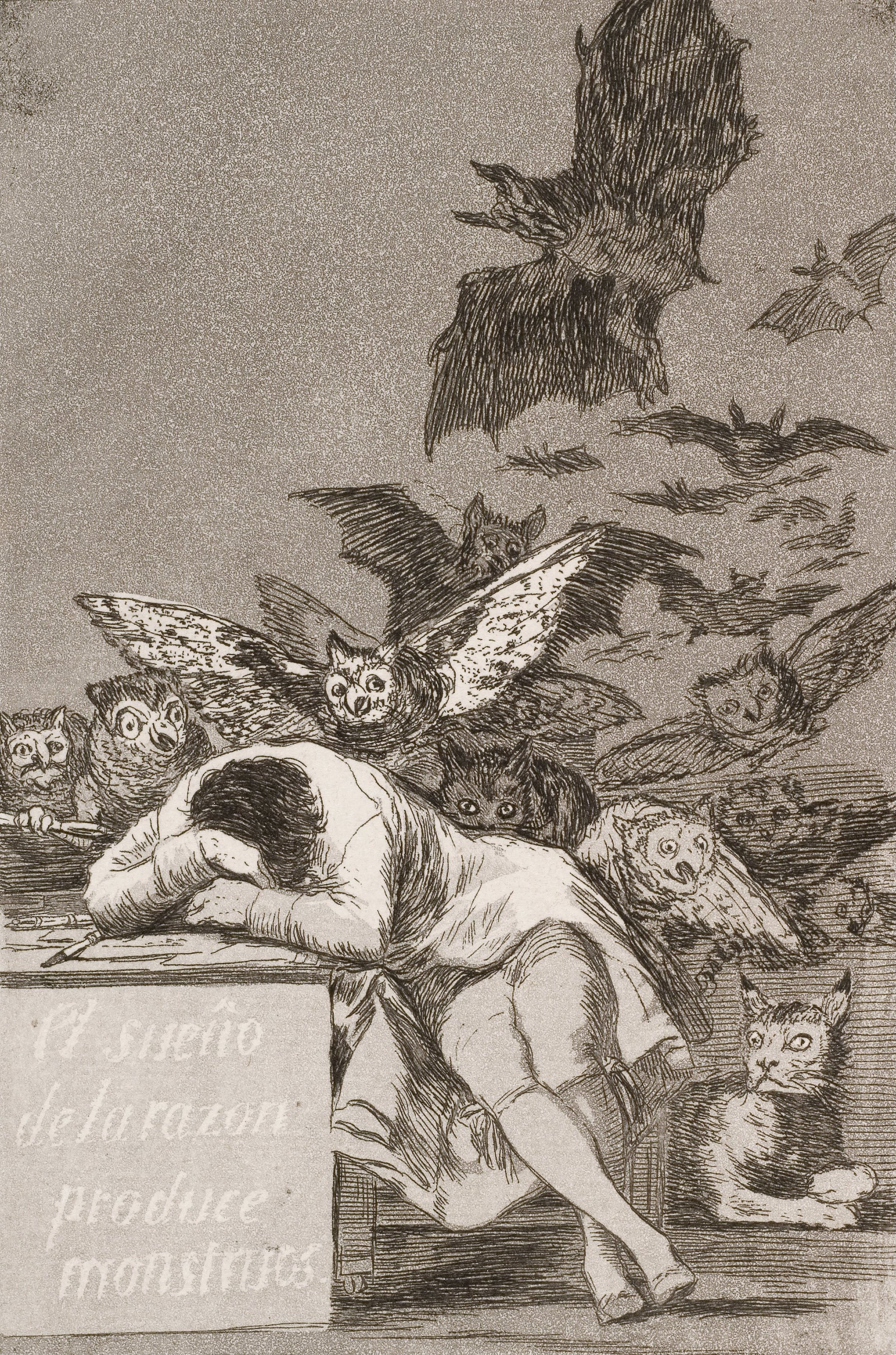 "Francisco de Goya (c. 1797)   The Sleep of Reason Produces Monsters   (El sueño de la razón produce monstruos )   Plate 43 of the 80 in the  Los Caprichos  series. Etching aquatint, drypoint and burin.   A few years ago, Ken Ralston (friend and master IB English Literature teacher) knowing that I was an admirer of Goya, once challenged me: ""What if we translated this as the  Dream  of Reason instead of the  Sleep  of Reason?"" Think carefully about this… To what extent can Reason, and all it entails let us down?"