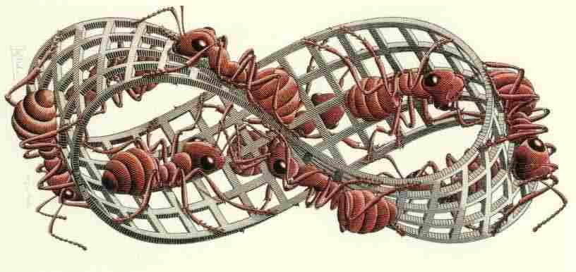 M.C. Escher (1963)   Möbius Strip II.  Original framed vertically. Woodcut in red, black and grey-green, printed from 3 blocks.