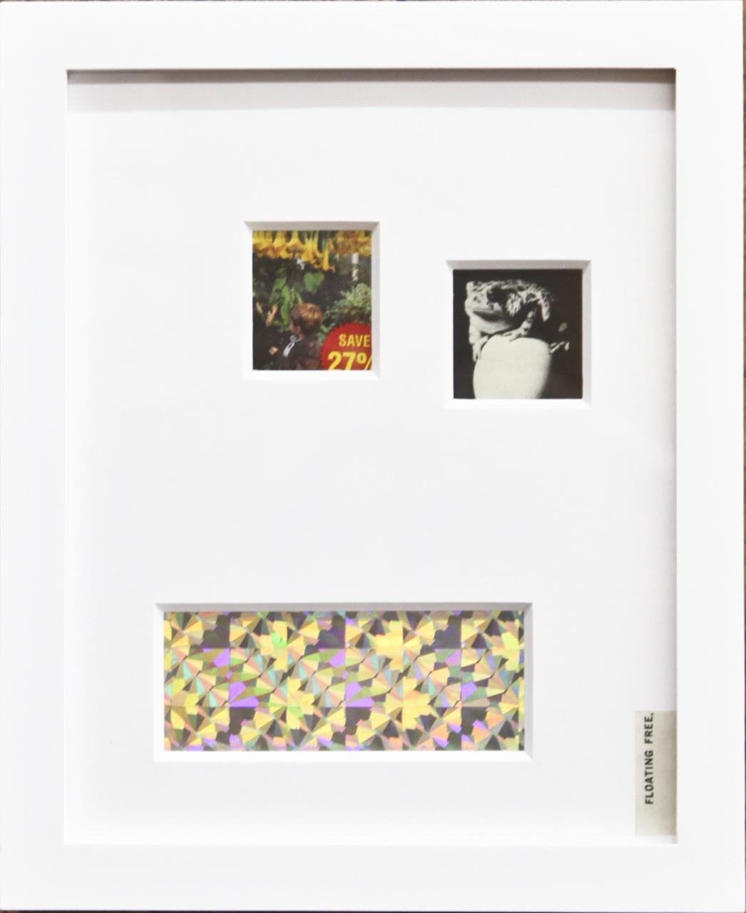 """Sarah Meadows """"Perennial Beauties"""" Found images, bird scare tape, cotton rag mat 8x10"""