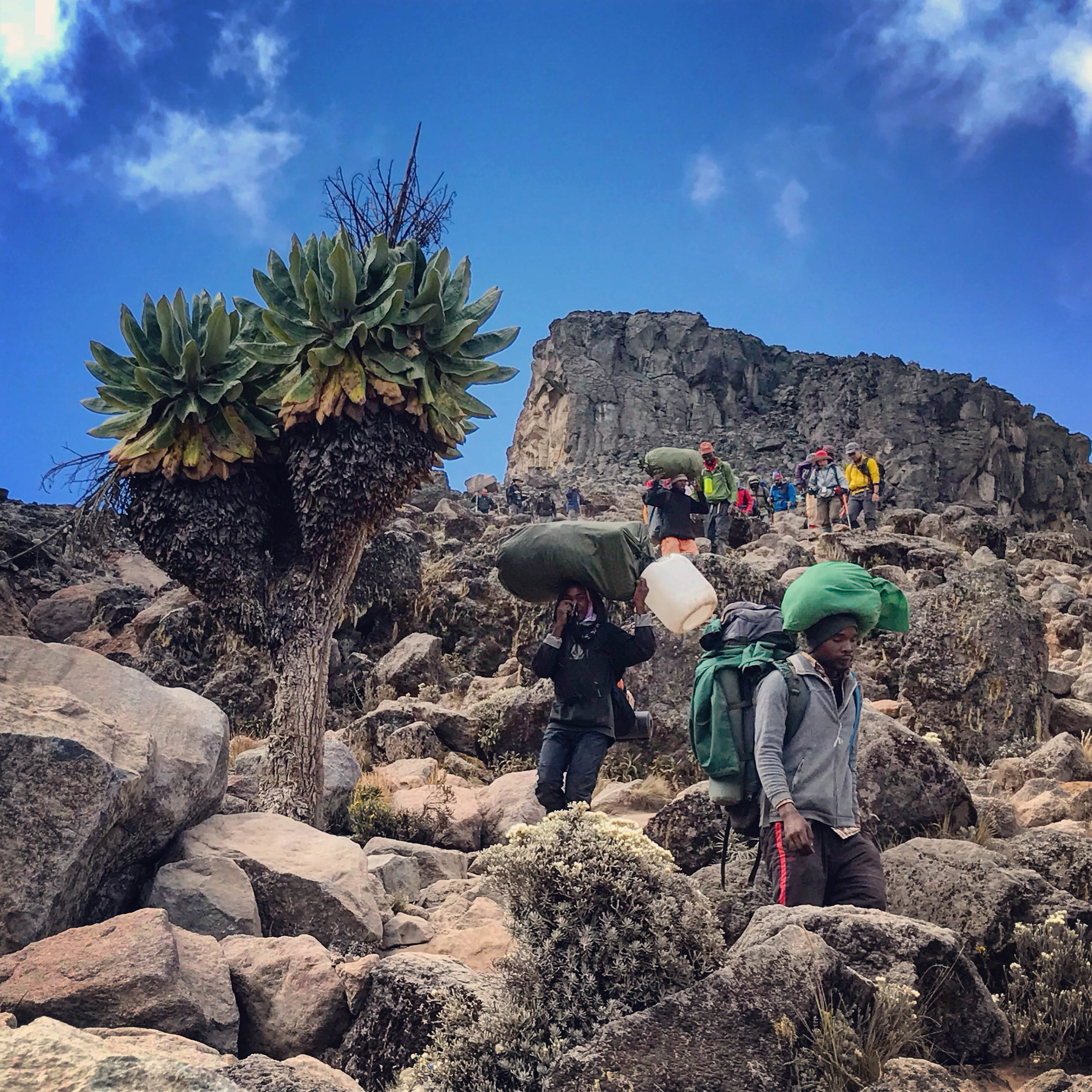 Hikers and porters heading down to Barranco camp