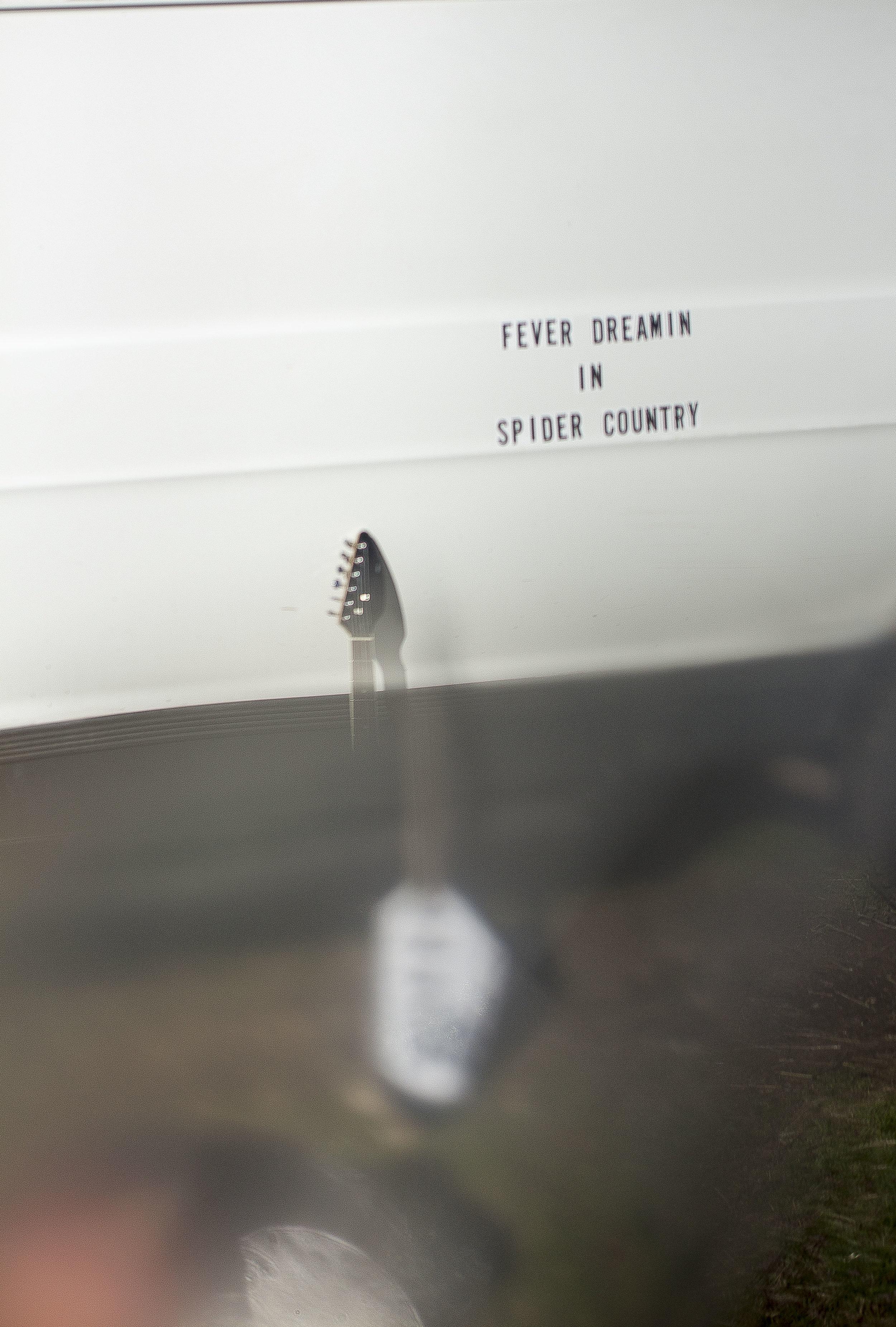 Spider Country van guitar a.jpg