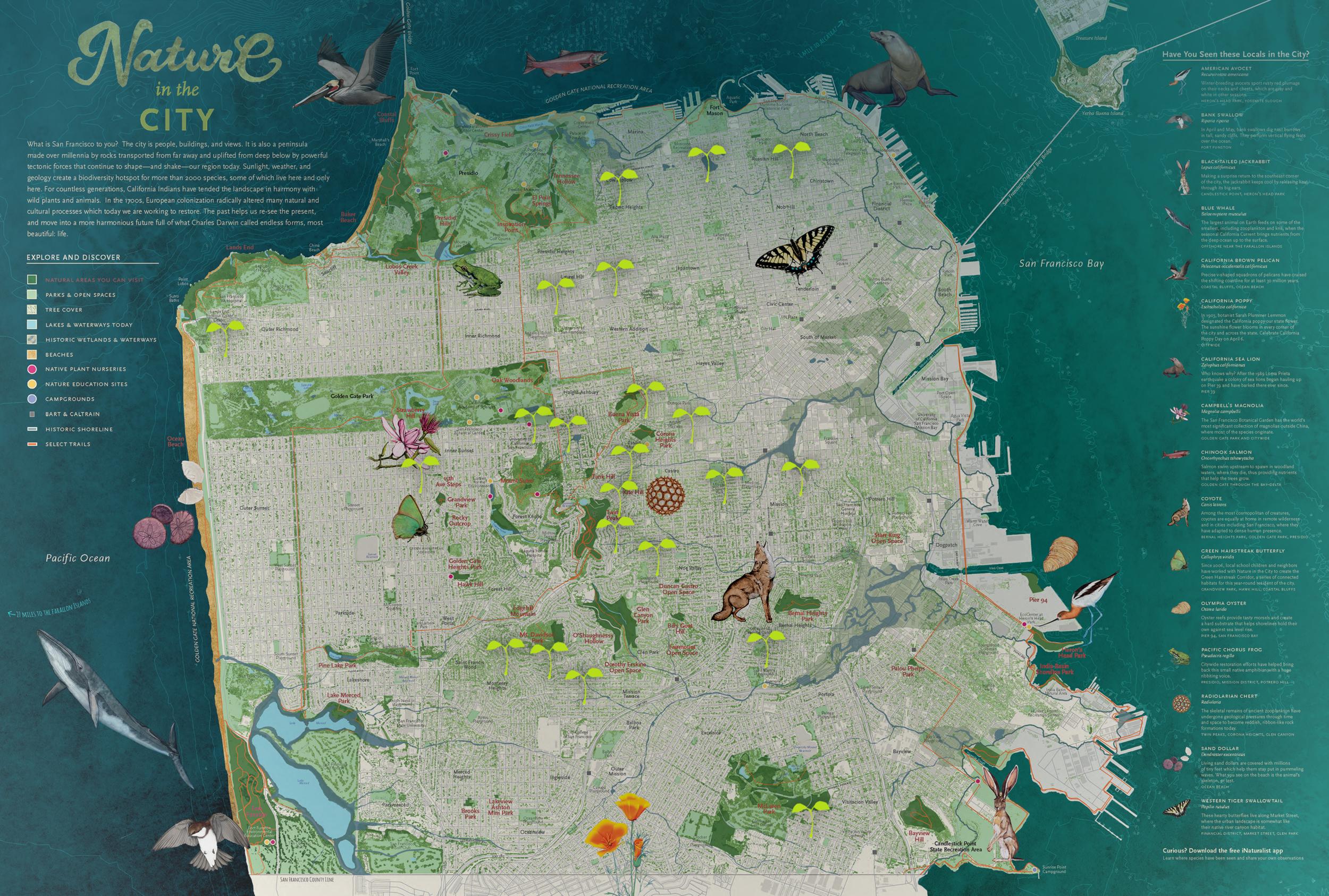Habitat Garden Map 2.png