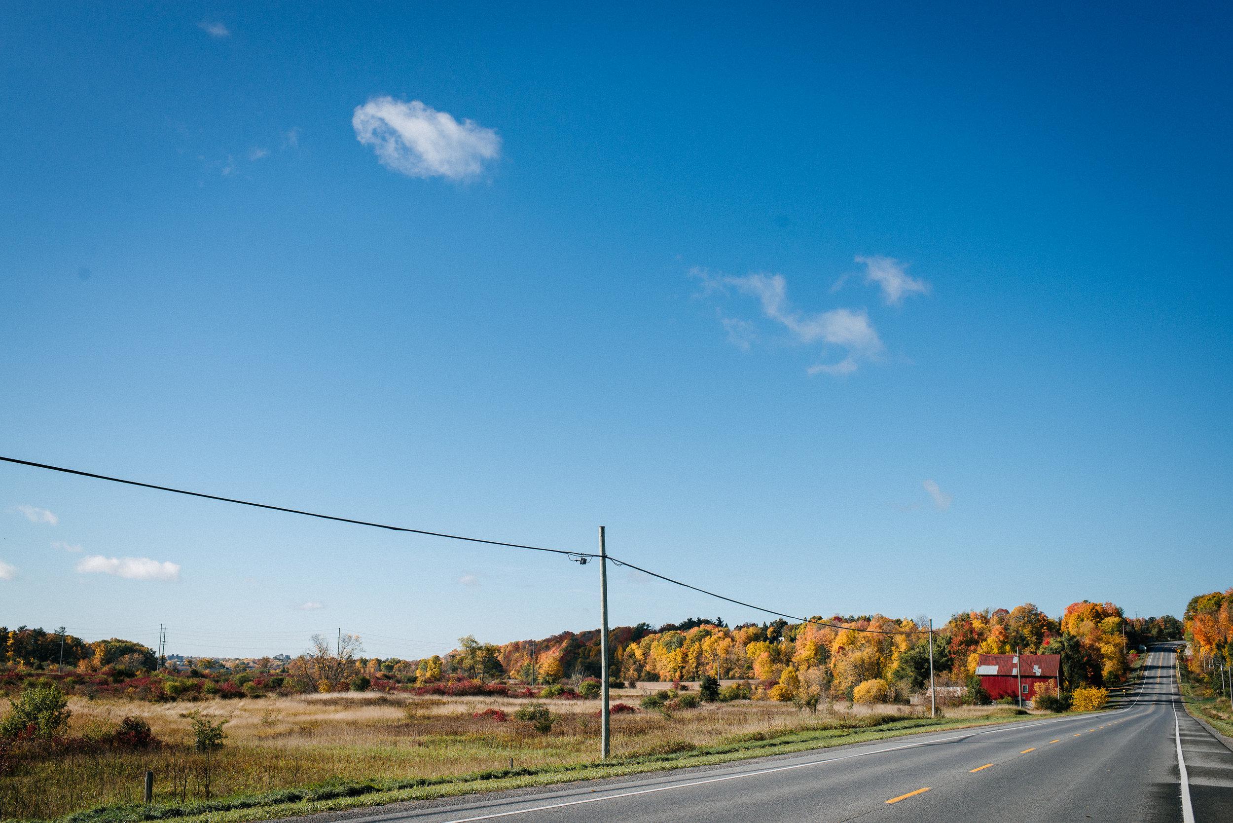 autumn dorumentary photography viara mileva-102825vm.jpg