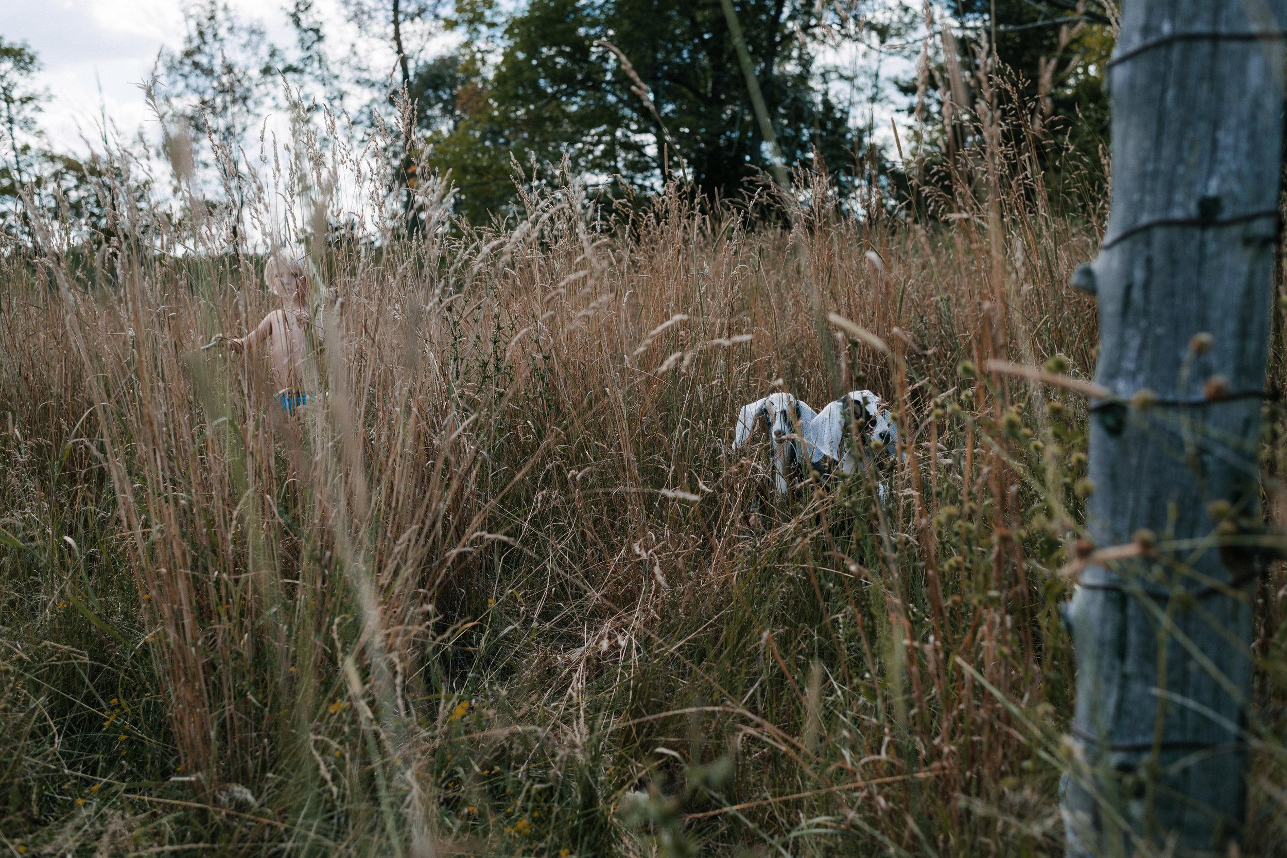 family documentary photography in kingston by viara mileva-153316vm.jpg