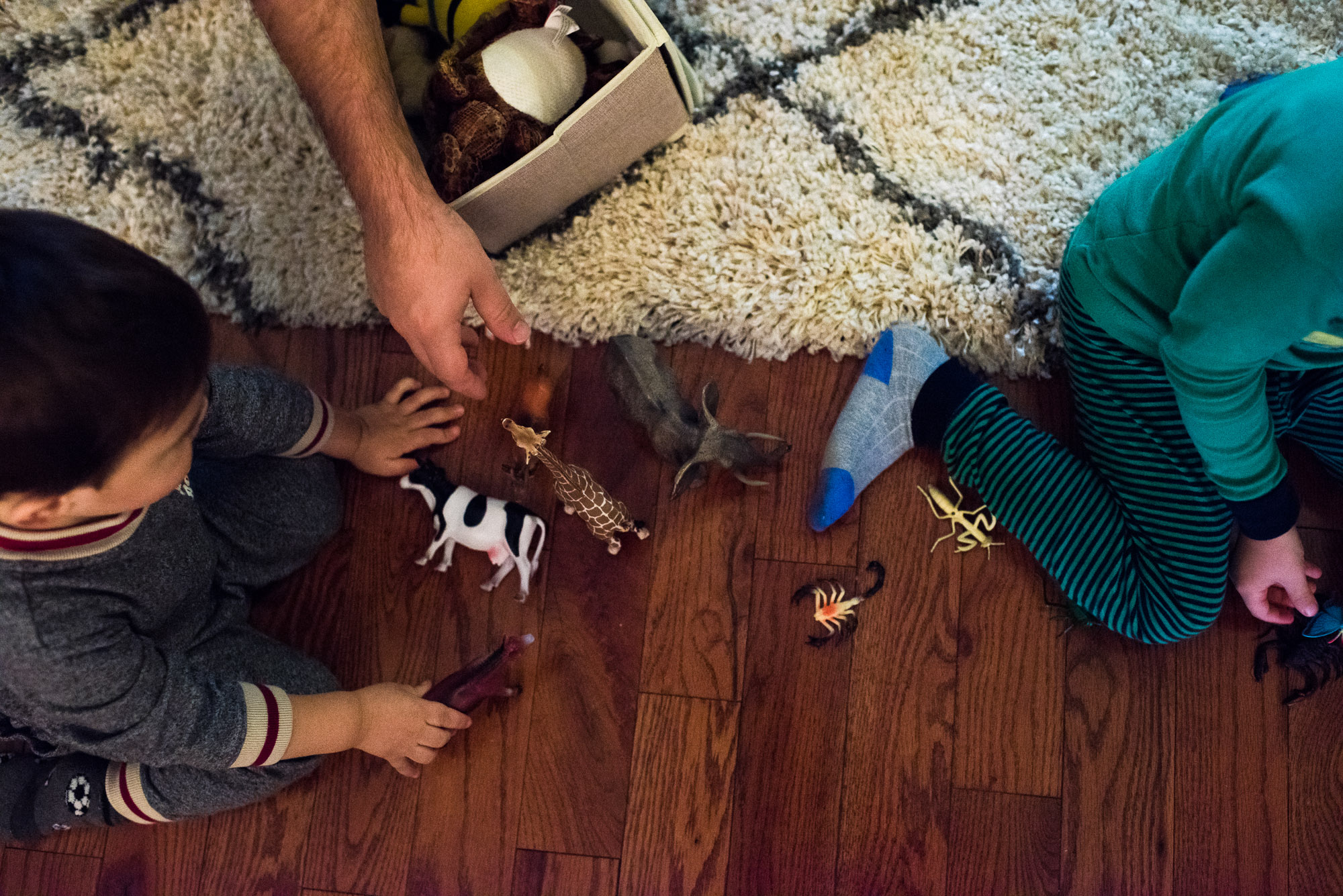 father and small boys play with farm animal toys
