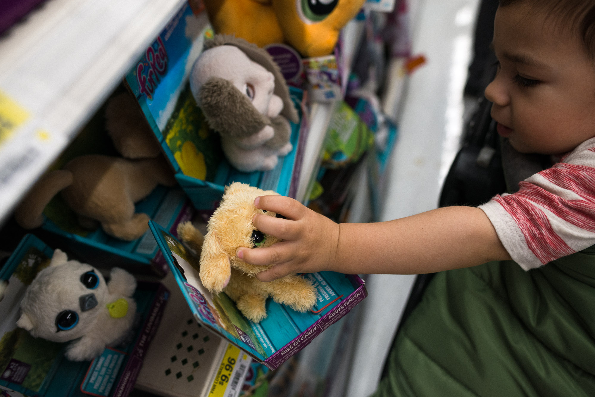 toddler grabs toy of the shelf while in stroller