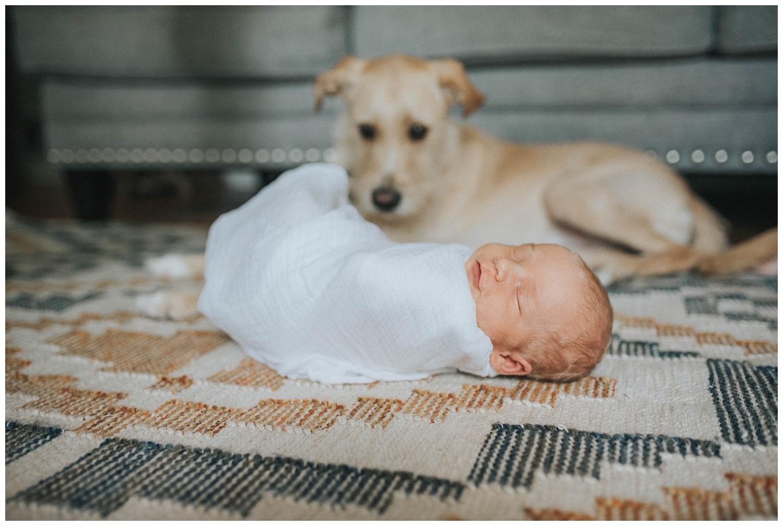 Milwaukee-Newborn-Photographer (12).jpg