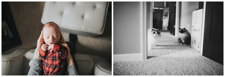 MKE-newborn-photographer (8).jpg