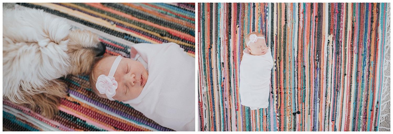 milwaukee-newborn-photographer-2018 (20).jpg