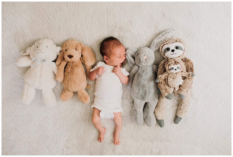 Milwaukee-newborn-photographer-2019 (36).jpg