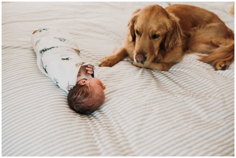 Milwaukee-newborn-photographer-2019 (46).jpg