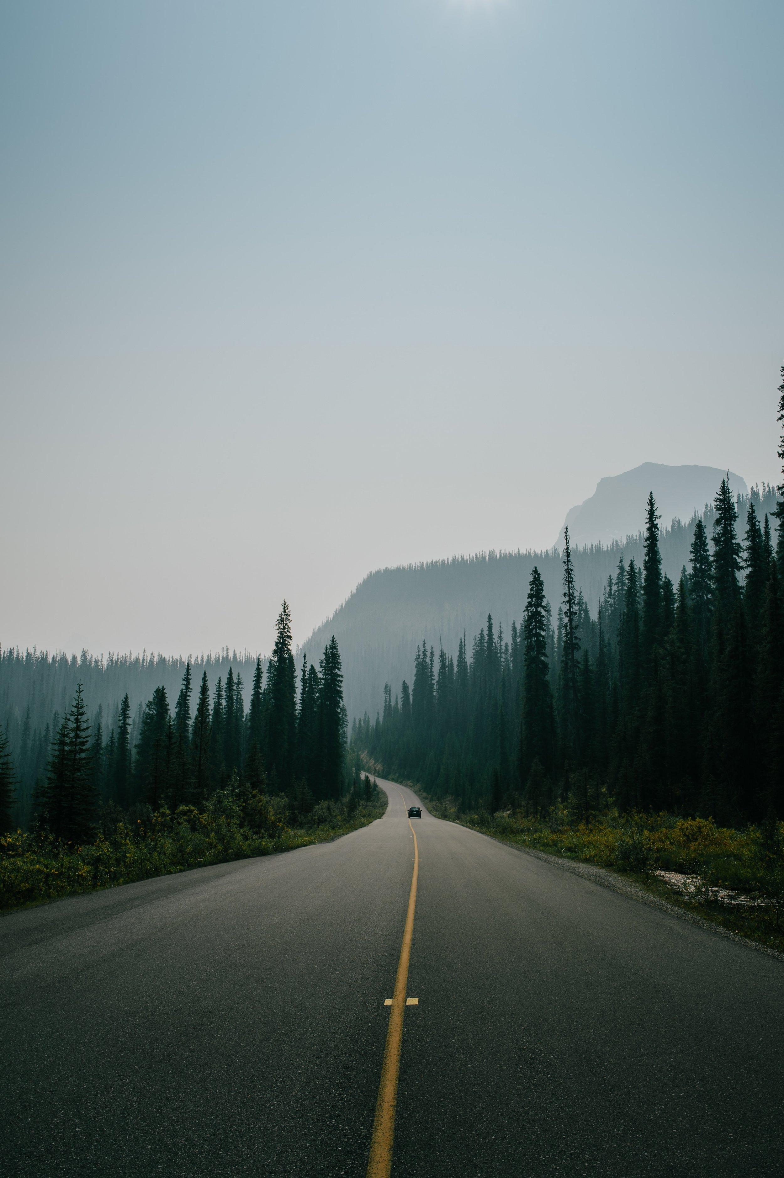 road ahead.jpg