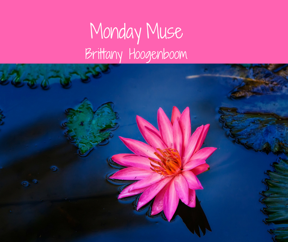 Boomer Monday Muse.jpg