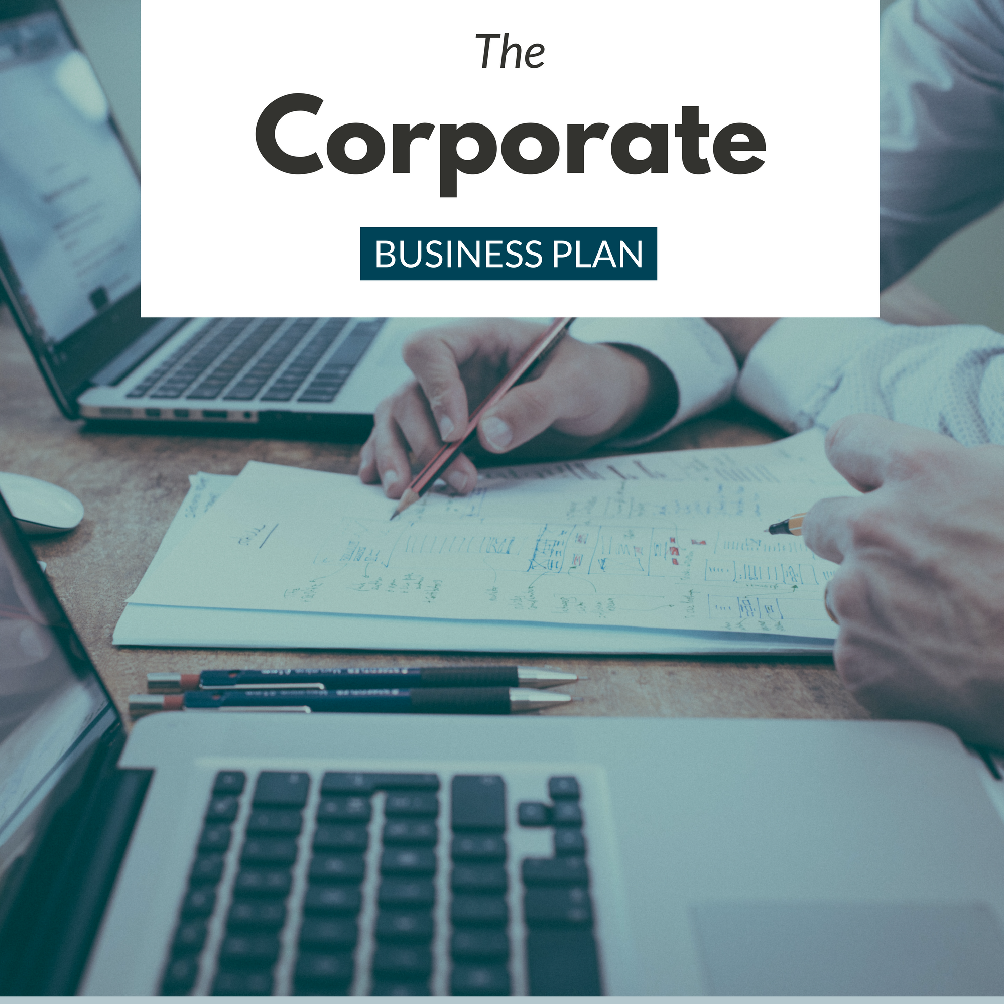 Business Plan Stan The Corporate Business Plan