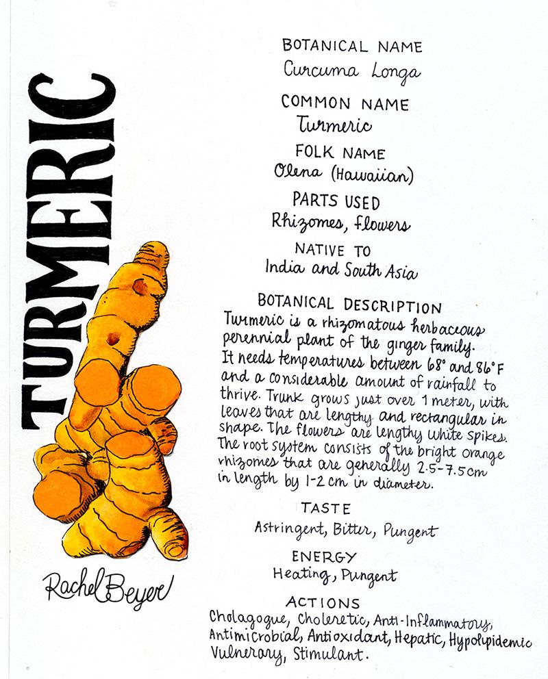 turmeric-3.jpg