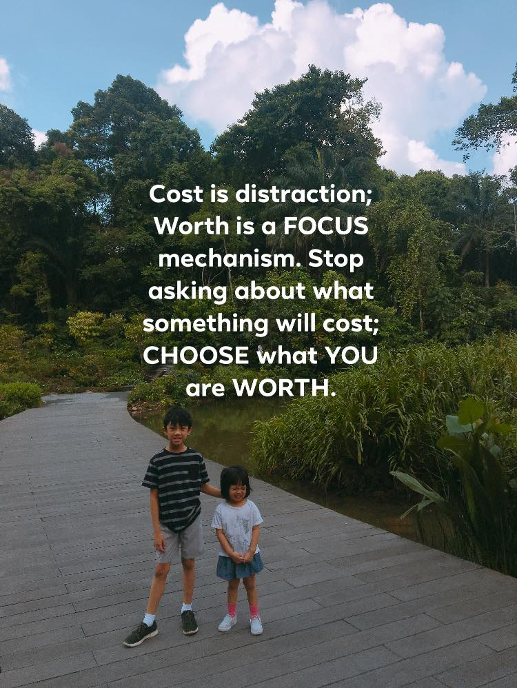 cost is a distraction.jpg