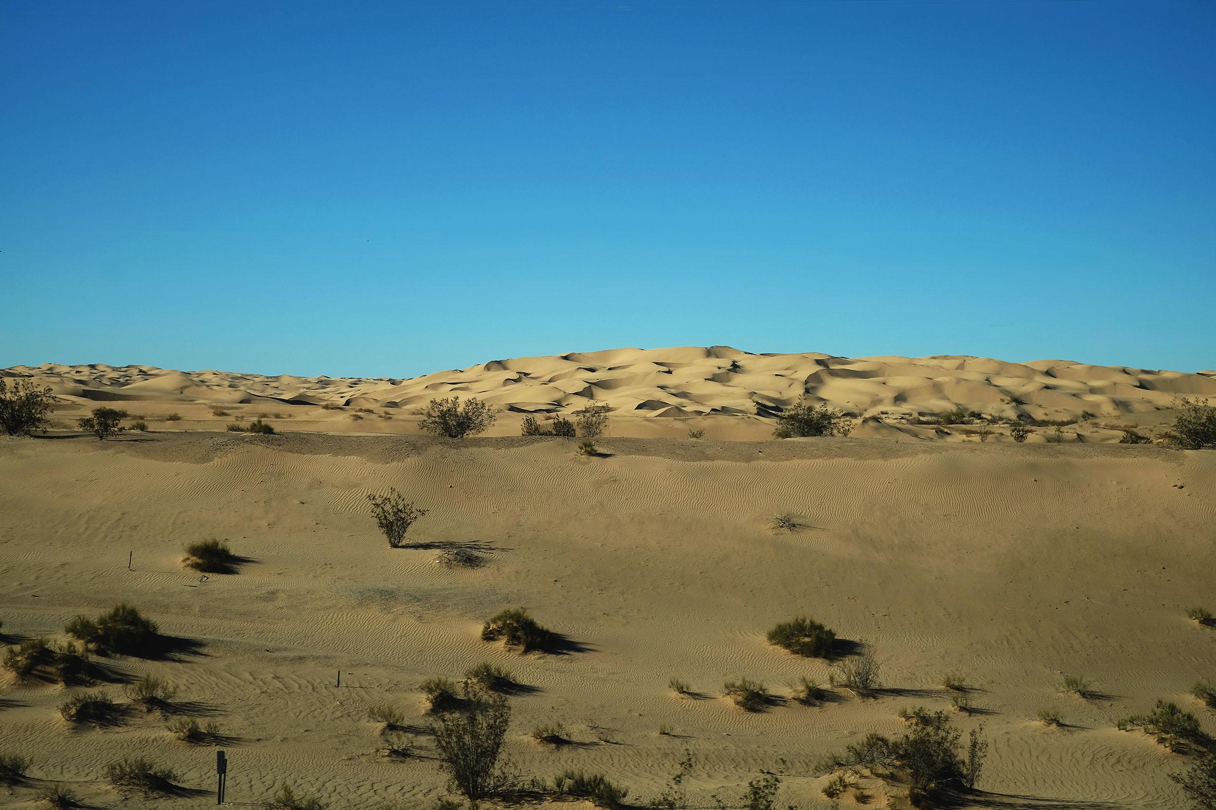 Desert00.jpg