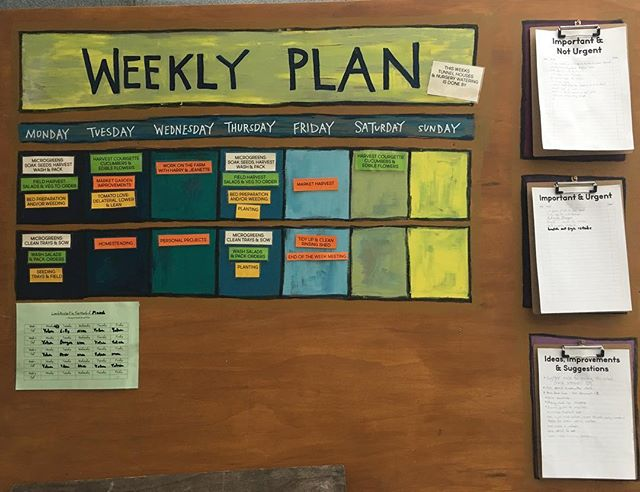 Good to have a weekly plan on board (pun intended). Thanks to Emma @extractigatorsnz for sign making and the lovely colour palette ✌🏽#marketgardening #weeklyplanner #leanfarming