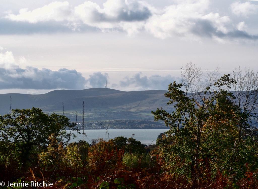 View from Rosstrevor