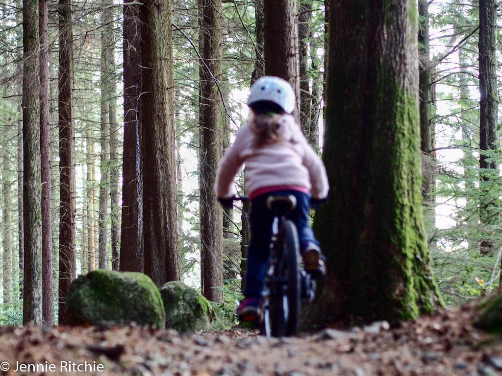 Rostrevor biking