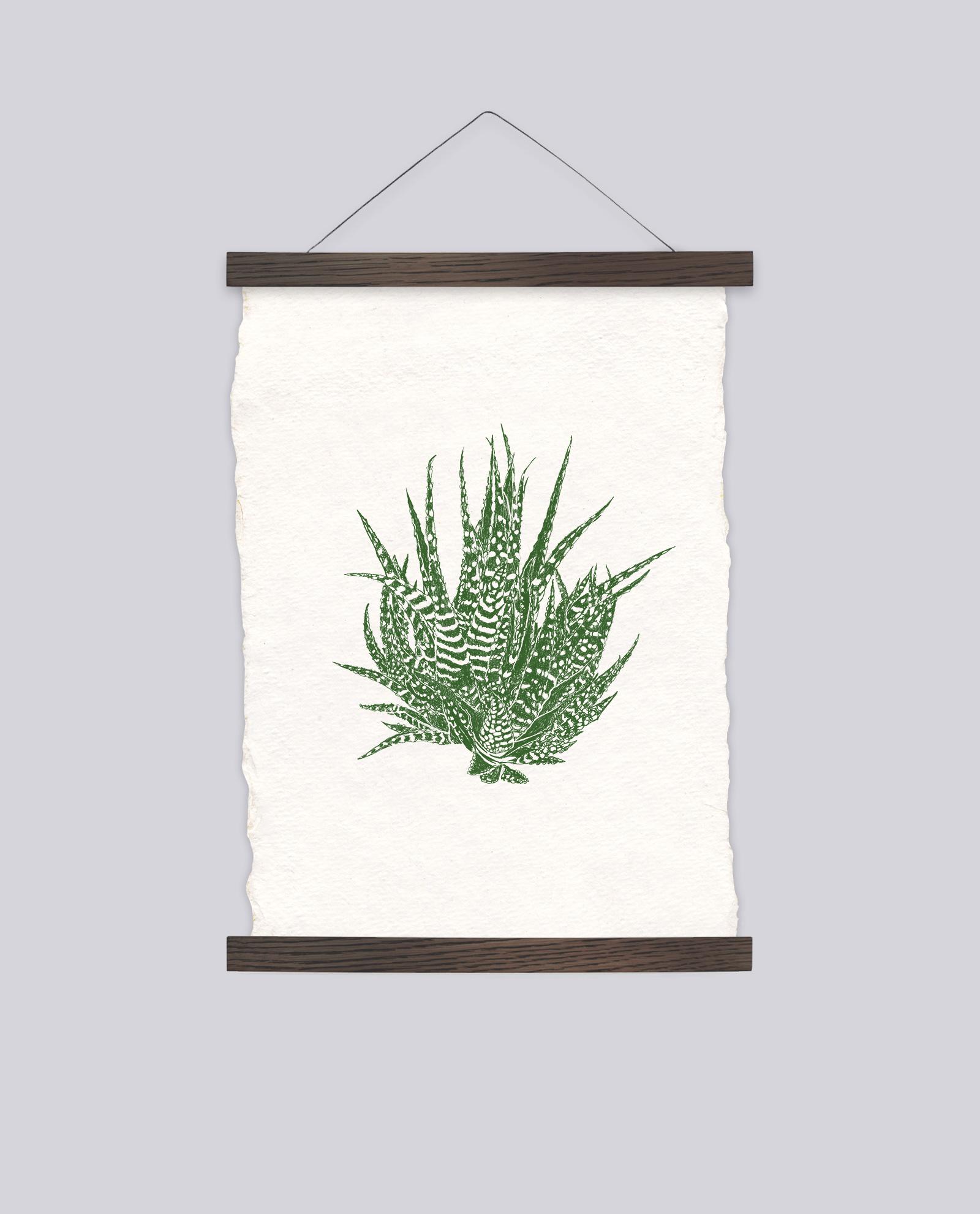 Aloe Vera by Martina Scott