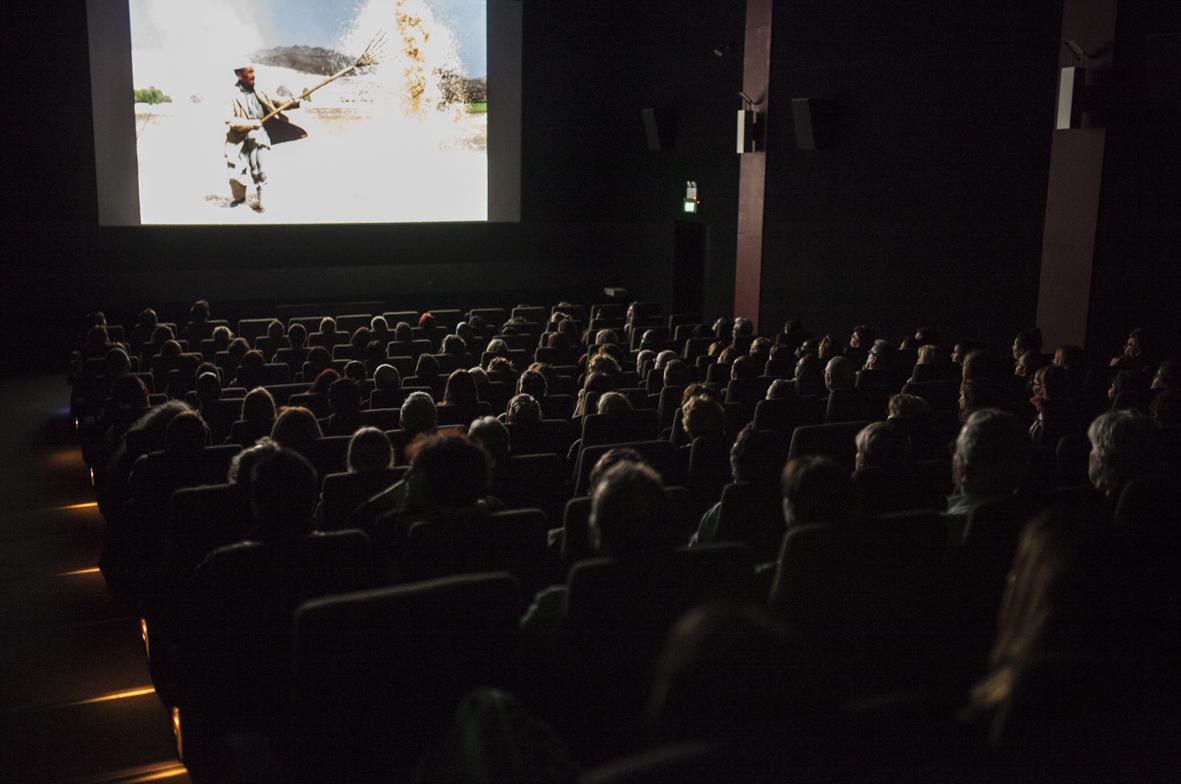 screenings-2.jpg