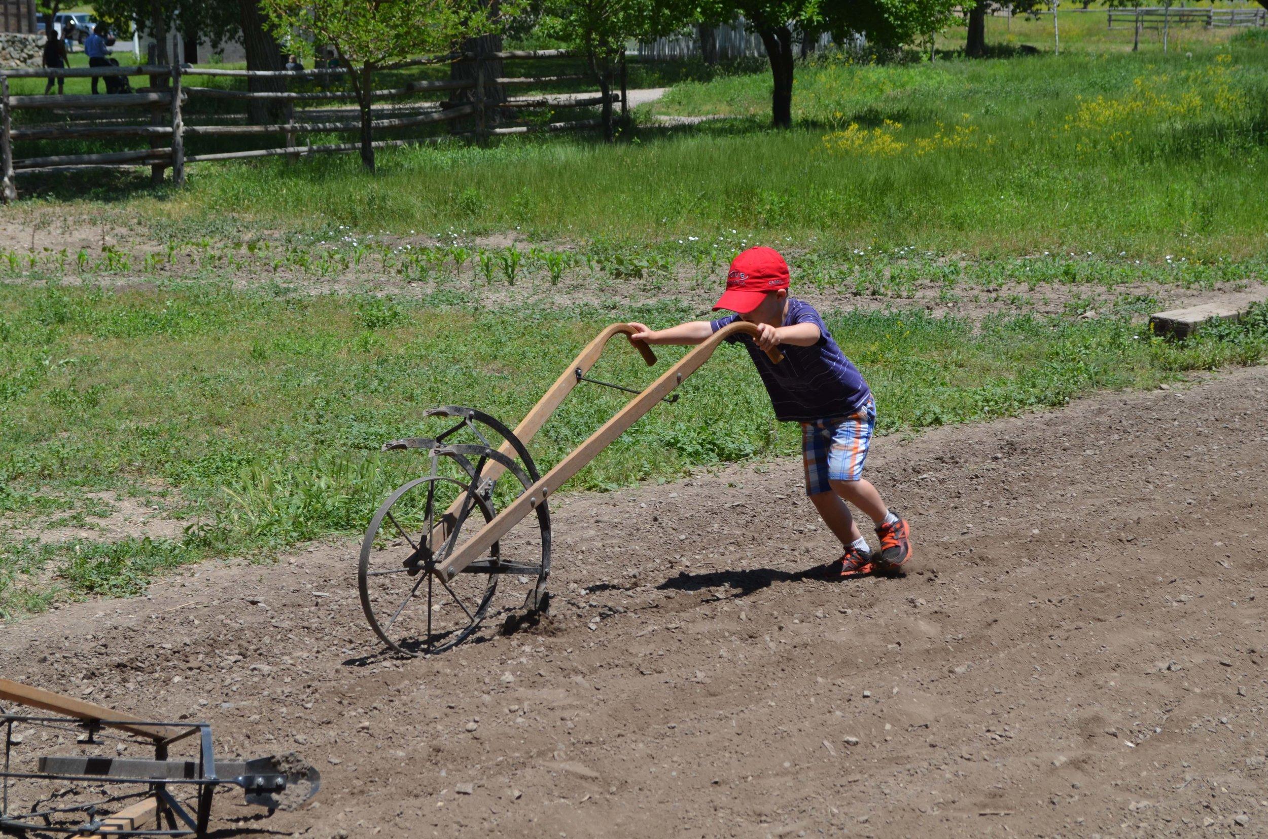 pioneer-chores_1.jpg
