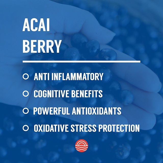 Another key ingredient in our Boost blend for combat athletes in mind. Acai extract has powerful antioxidants which will keep your immune system in check during training camps. #FuelYourFight