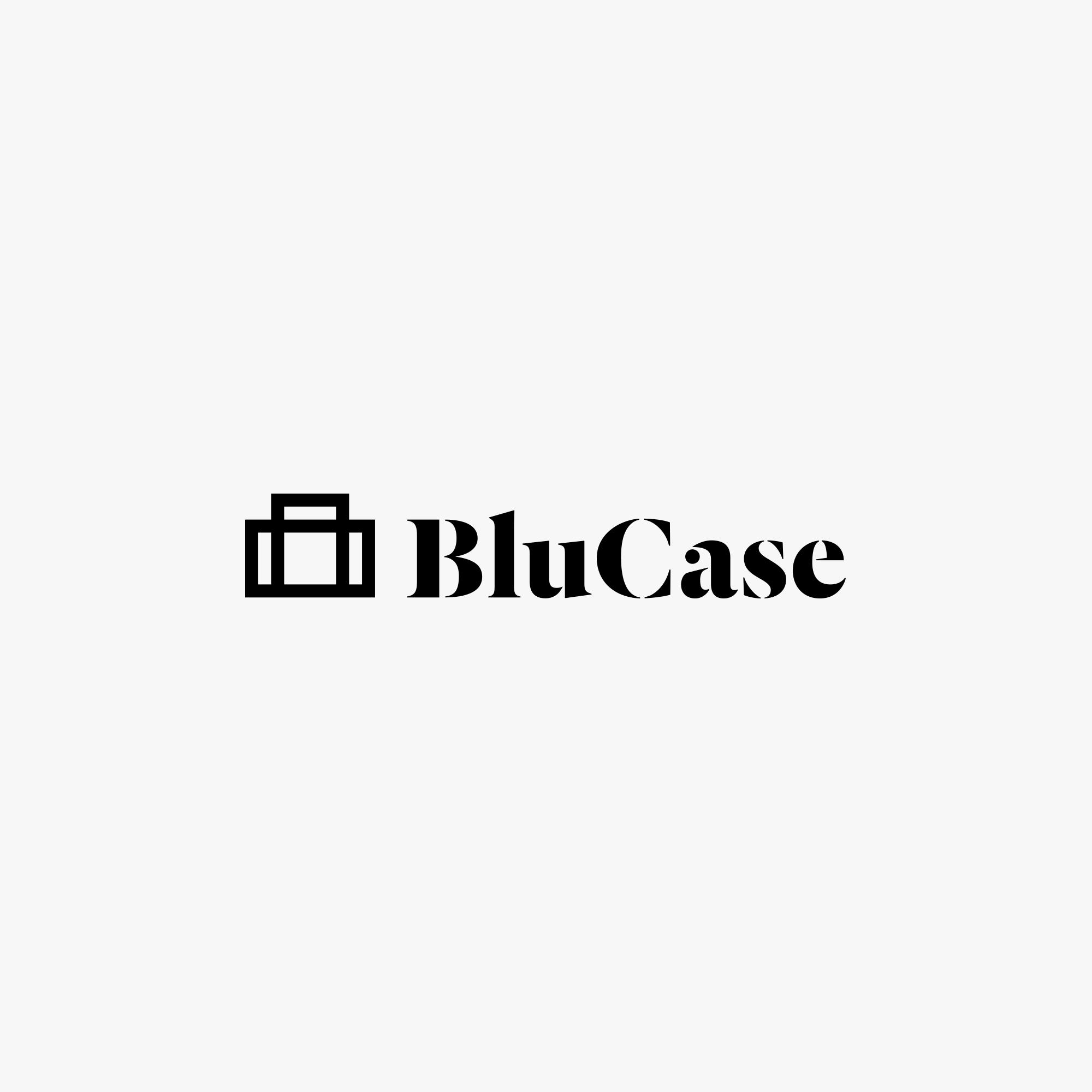 pauldersidan_blucase_logo_1.jpg