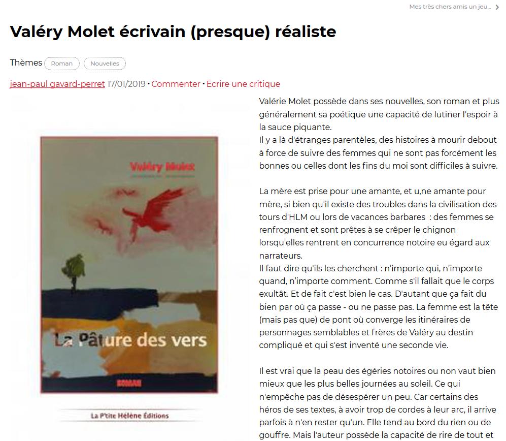Valéry Molet écrivain (presque) réaliste.png