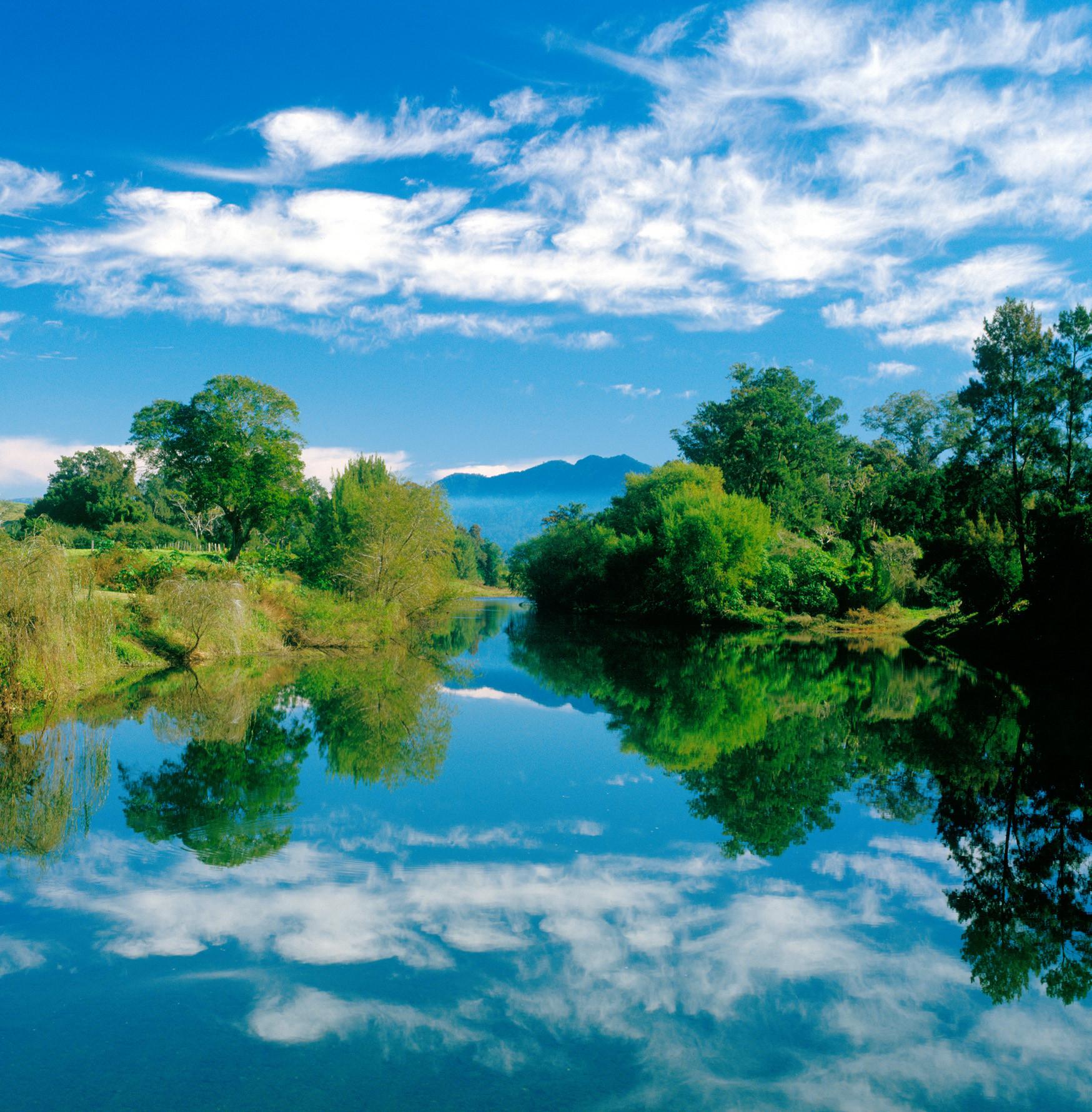 Bellnger-River-Bellingen.jpg