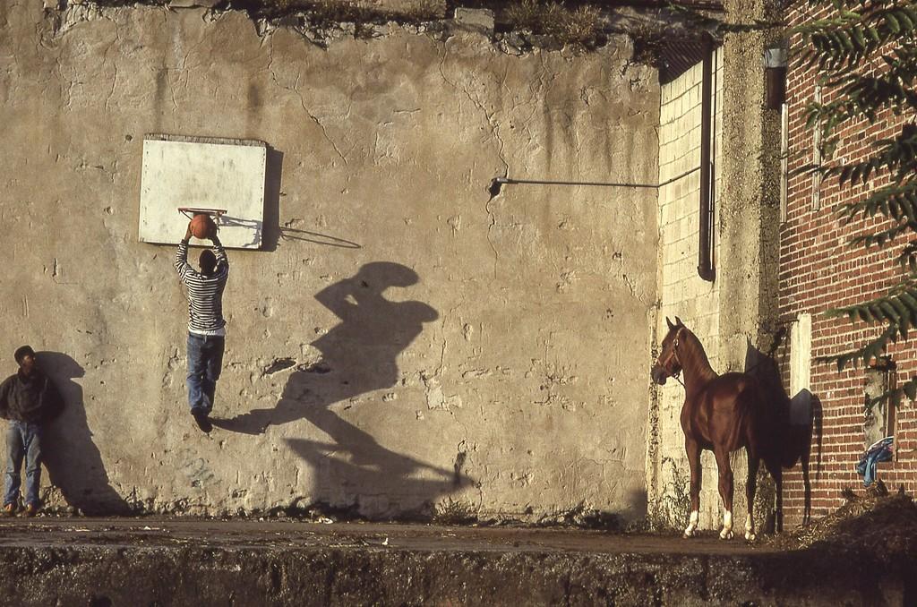 the basketball game.jpg