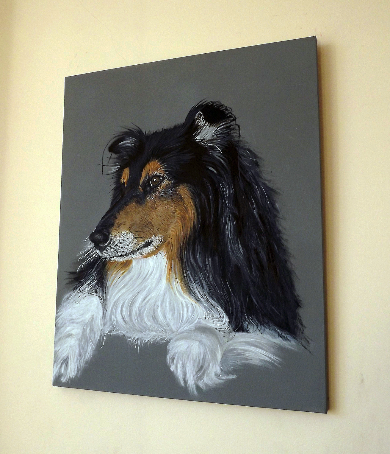 Ian Salmon Bodie Rough Collie Dog portrait 4.jpg