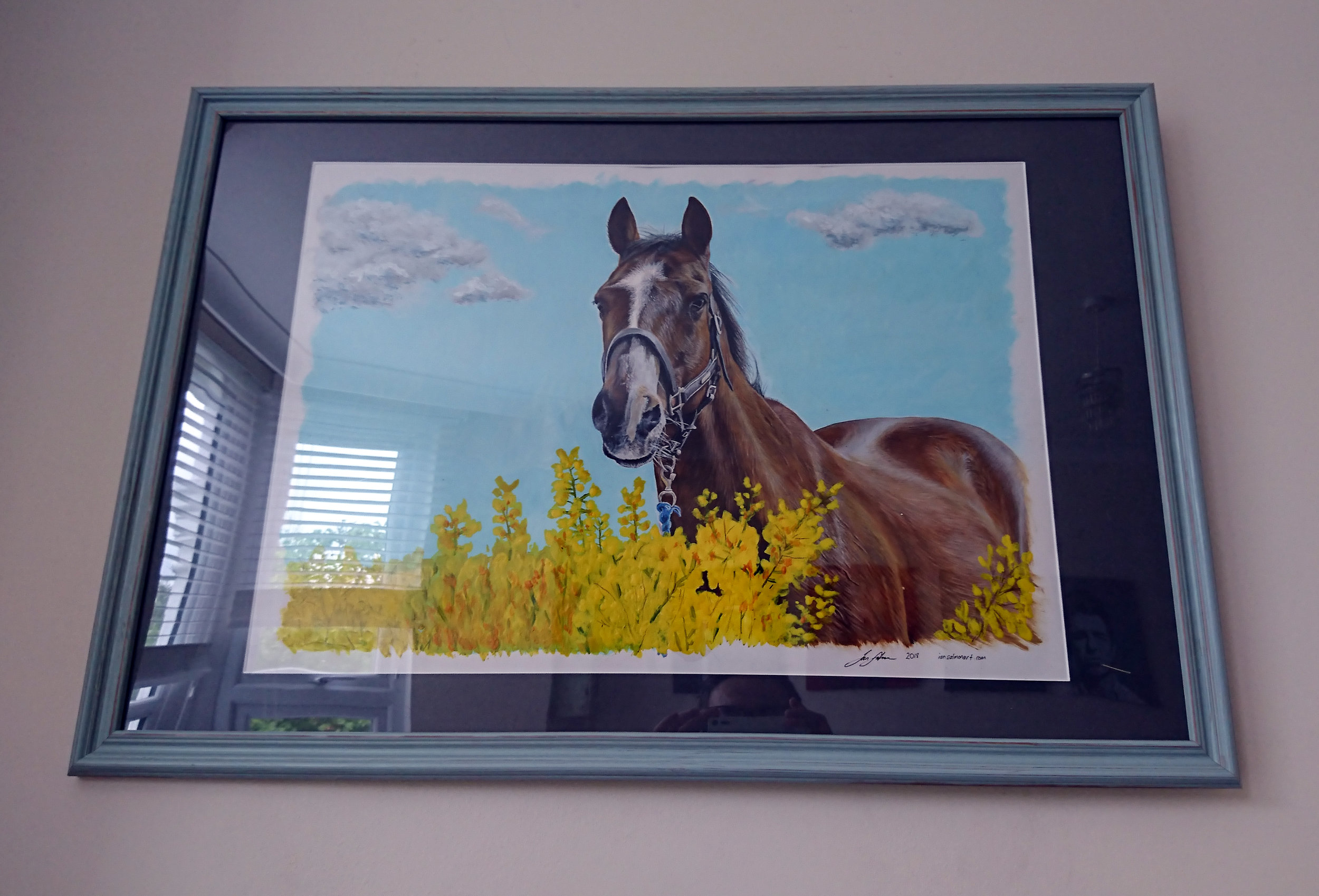 Debbie - 14/10/18Asked Ian to do a portrait of my horse that I lost over 4 years ago now. I couldn't have been happier with the result. He captured the coat so well I could reach out and stroke him once again. He also captured his character perfectly. Thank you so much Ian. A cherished memory captured.