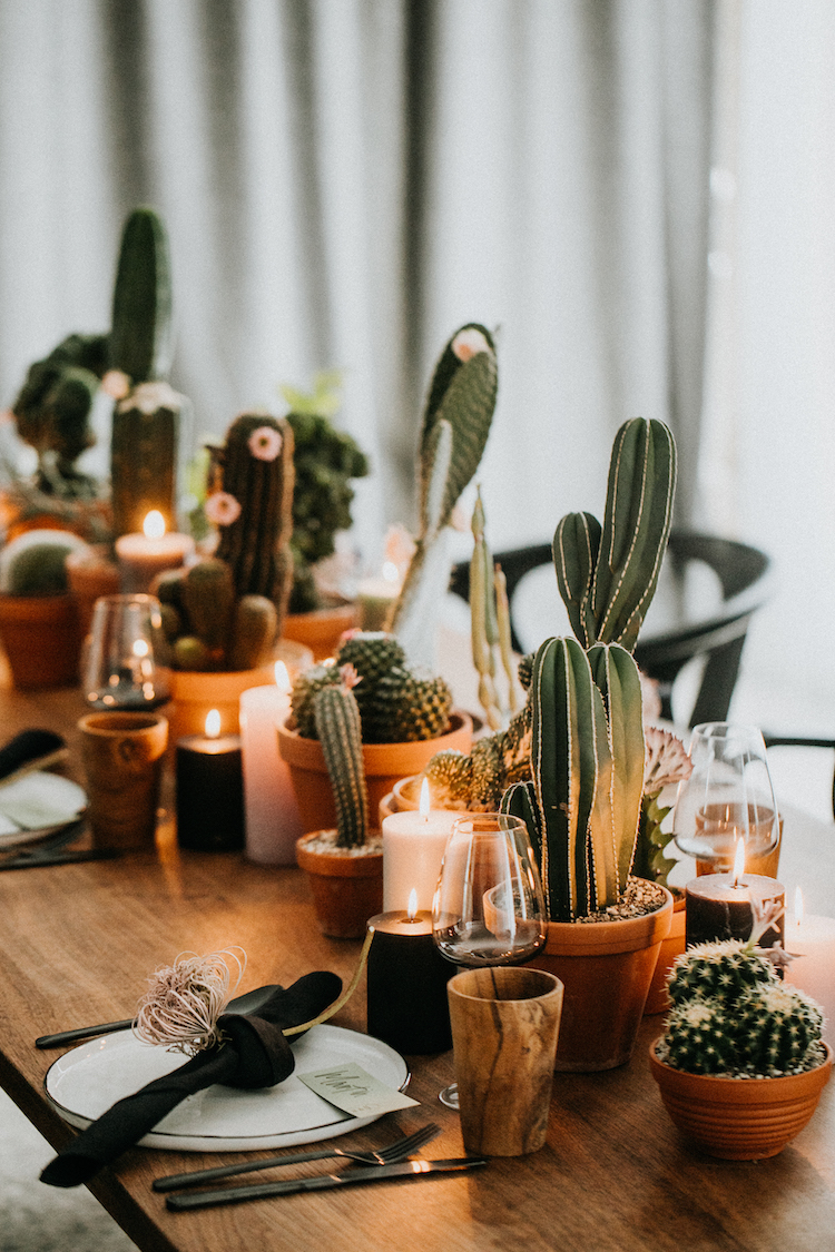 On Cloud Bloom-Cactus Infatuation-003.jpg